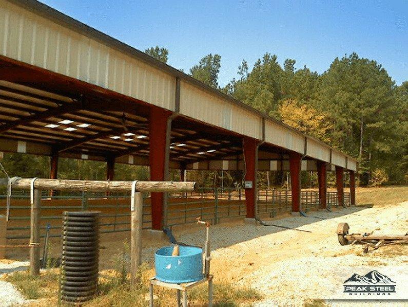 Horse Arena 2