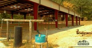 Best Horse Arena Options